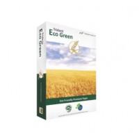 """Бумага А4/75 500л. """"Trident"""" Eco Green (Индия)(класс С)"""